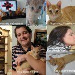Super Pet – A História de superação de Lugano, seus irmãos e seus pais! Mais uma da Pet Med!