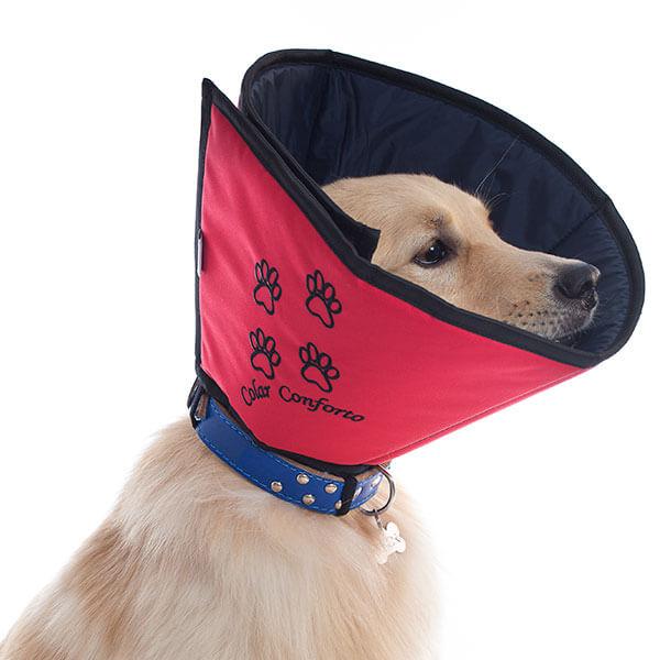 Colar Conforto - Pet Med