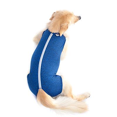 Roupa-protetora-Castração-de-Cães-(Machos)2