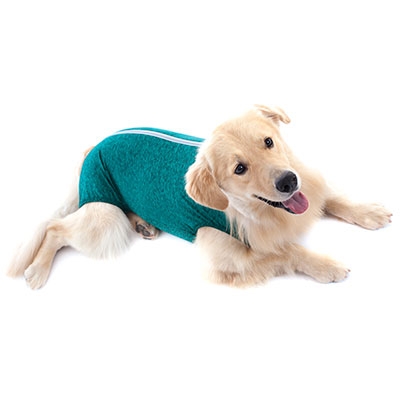 1d4a94614 roupa-protetora-Regular-para-Cães-machofemea4