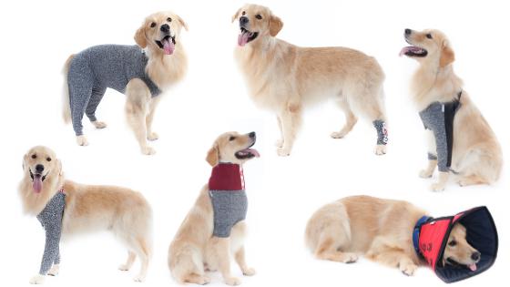 Protetores de Membros Pet Med