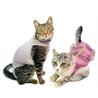 gatos-ultra light