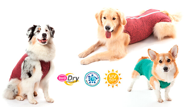 Roupa Protetora - Duo Dry Regular para Cães