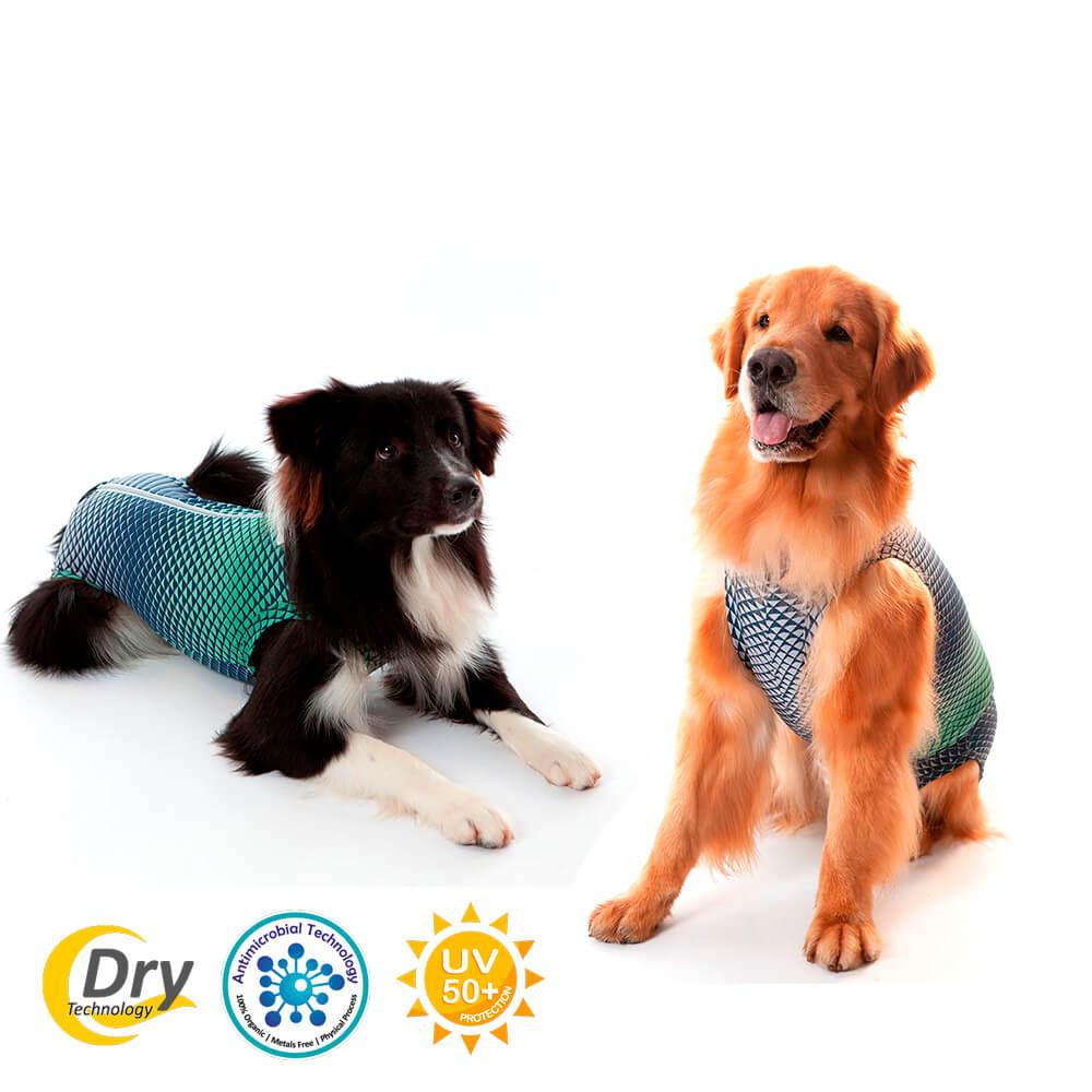 Roupa Protetora - Ultra Light Color Castração Cães Macho