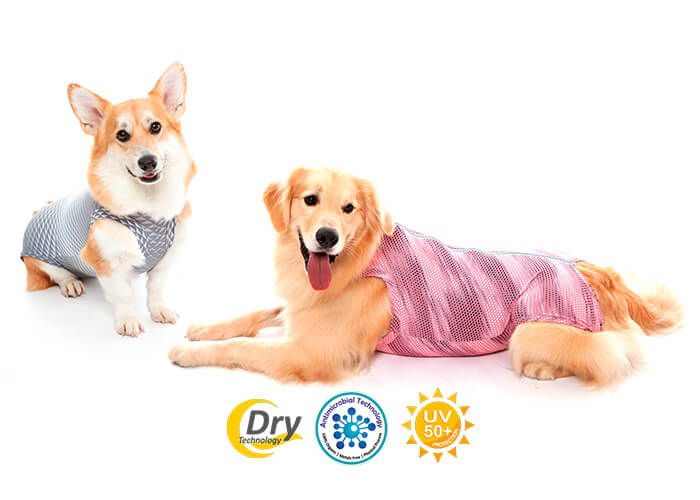 Roupa Protetora – Ultra Light Color Regular para Cães