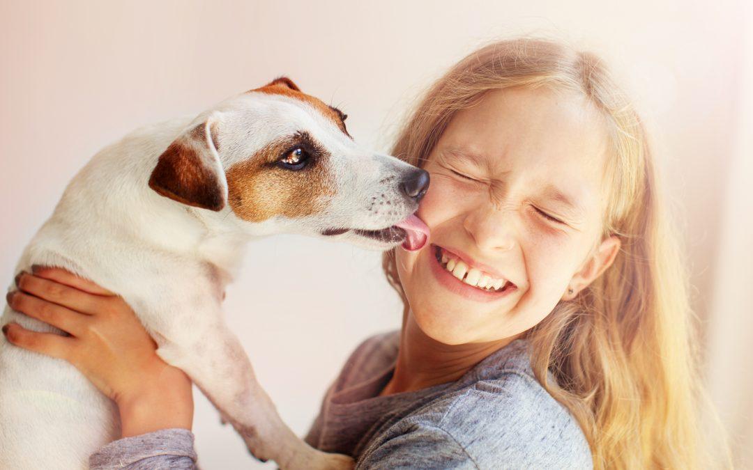 Benefícios do relacionamento das crianças com os animais