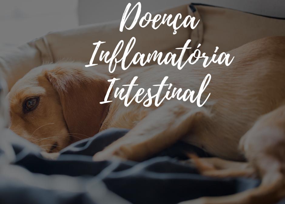 Maio Roxo: Conscientização da Doença Inflamatória Intestinal