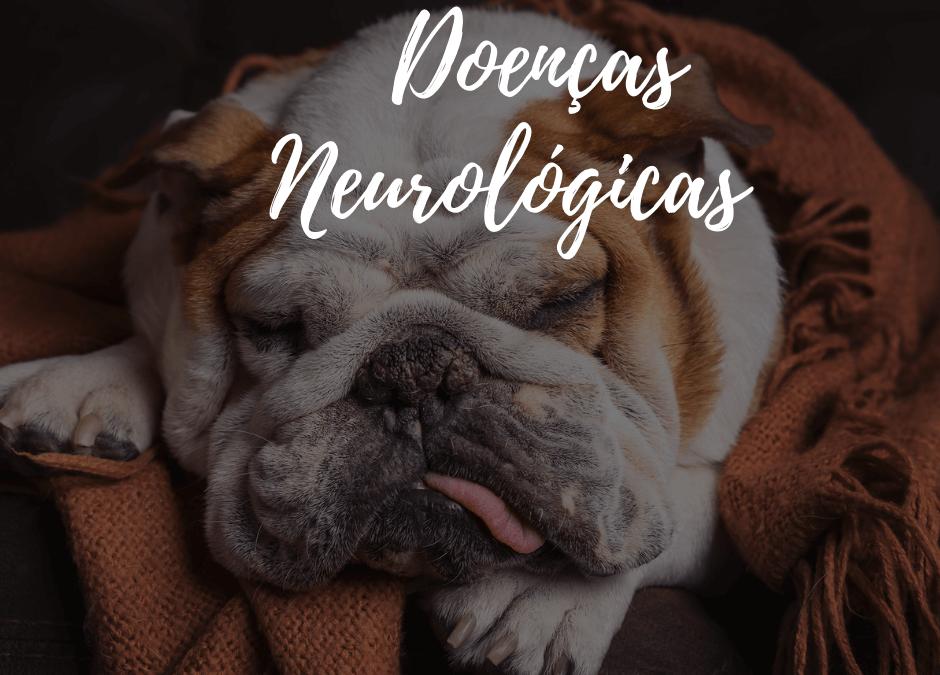 Junho inclusivo e doenças neurológicas nos pets